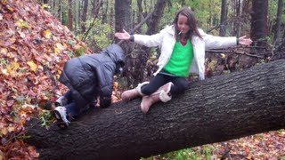 Video Hurricane Sandy Knocked our Tree Down (WK 94.6) download MP3, 3GP, MP4, WEBM, AVI, FLV September 2017