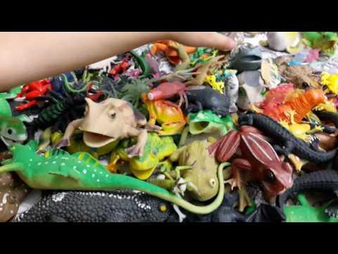 Макси и Ко - лягушки, Гекконы,  Насекомые,  а также Лизуны и другие резиновые игрушки. Часть 2