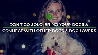 Happy Tails Tours - For Solo Travelers
