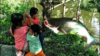 Children Fishing Yummy Cooking fish Eating delicious Natural Life