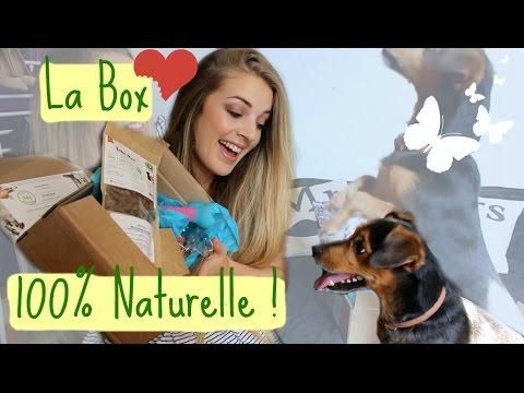 Découverte Box 100% Naturelle et Bio ! Pour nos Toutous !
