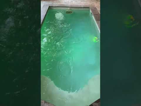 Indoor swim spa. Swim against the current. Jacuzzi spa