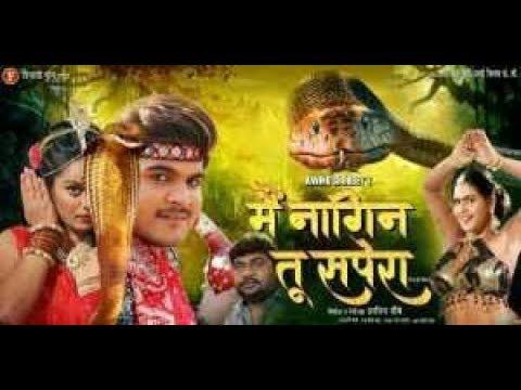 Bhojpuri movie Mai nagin tu sapera ka shubh muhurat ,hamar bhojpuri chanel