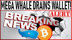 MASSIVE AMOUNTS OF BITCOIN MOVED TO EXCHANGES! NEW BULL CYCLE! MEGA WHALE DRAINS BTC WALLET!