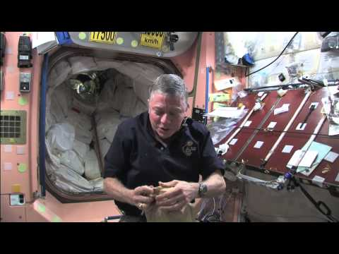 La NASA cerca idee per gestire la spazzatura sulla ISS - Tom's Hardware