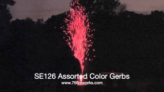 SE126 Assorted Color Gerbs
