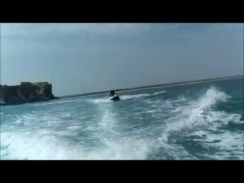 Speedboat and Jet Ski trip to Flamingo Island (Djerba, Tunisia)