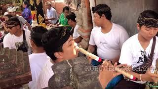 Download Lagu SAYANG KAMU SEPENUH HATI!!! BY KUBU GENDOK mp3