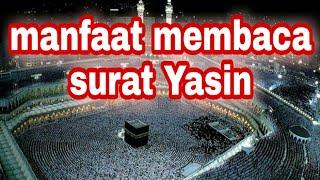 Surah Yasin Merdu Full dan Terjemahan Indonesia Muhammad Herlambang