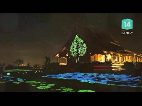 พาเที่ยว จ.อุบลราชธานี ชมต้นไม้เรืองแสงที่วัดภูพร้าว - วันที่ 25 Feb 2018