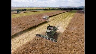 Успешно земеделие - броят от 18.07. 2019
