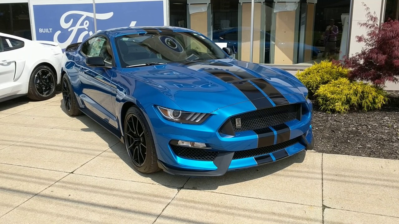 2019 Ford Mustang Shelby Gt350 Velocity Blue