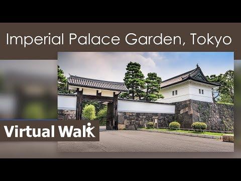 Treadmill Workout Sakura - Cherry Blossom. - Imperial Palace Gardens - Tokyo - Japan  桜の花