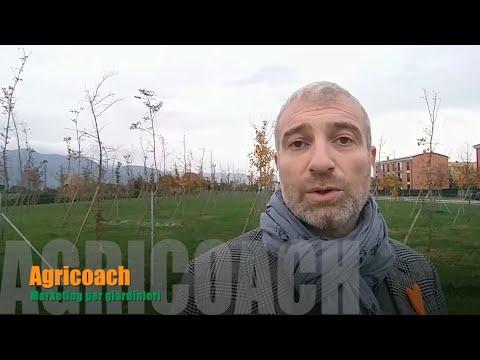Popolo Giardiniere Evolviti Ed Impara Il Marketing!