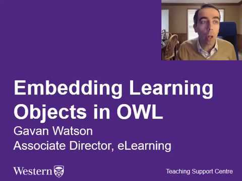 How to embed multimedia objects in OWL