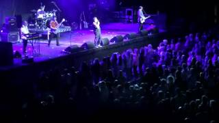 Bay City Rollers - Brighton 2014