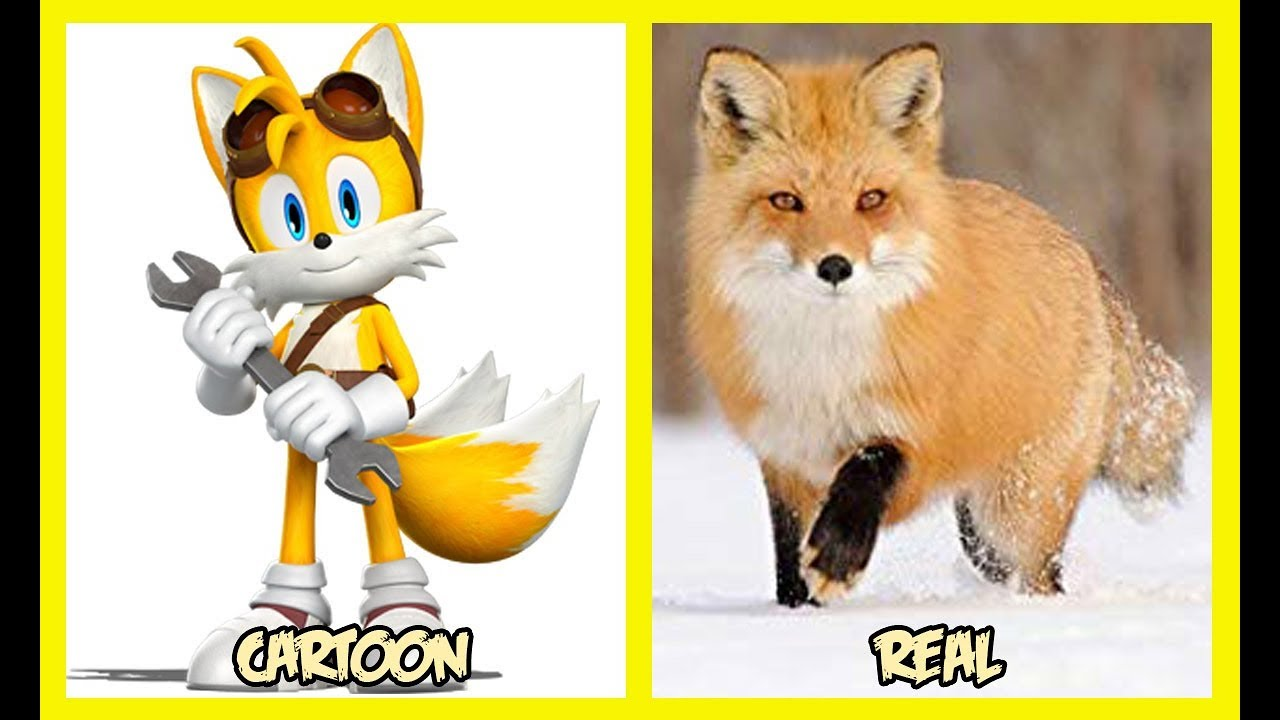 Sonic Boom Characters In Real Life - YouTube