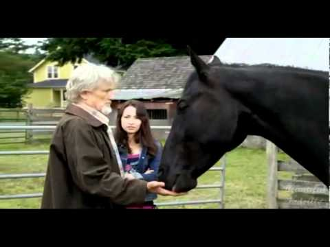 Jodelle FerlandMidnight Stallion - What About Midnight