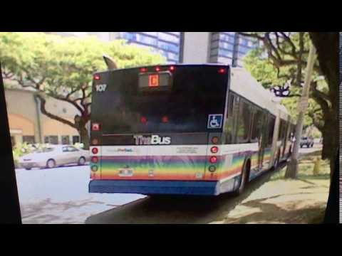 TheBus Honolulu 2002 NewFlyer D60LF #107 Route C Picture