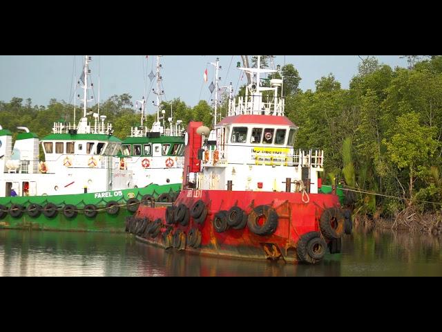 PT Batulicin Nusantara Maritim Tbk ( BNM )