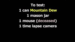 Will Mountain Dew dissolve a mouse?