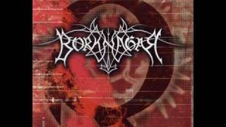 Icon Dreams - Borknagar