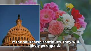 US government shutdown: anniversary of Trump inauguration marred by chaos