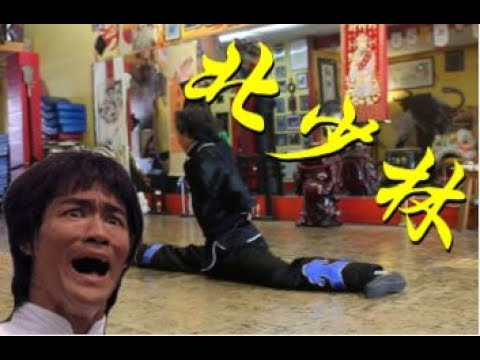 Thumbnail: THE STYLE THAT STUMPED BRUCE LEE: NORTHERN SHAOLIN 北少林