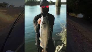 Sacramento river salmon fishing