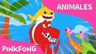 Tiburón Bebé - Rex | Animales | Dinosaurios | PINKFONG Canciones Infantiles