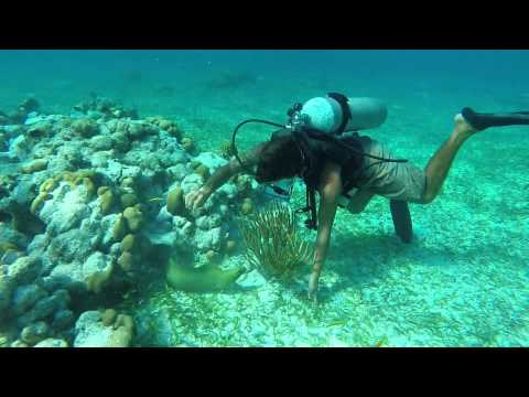 Belize april 2014