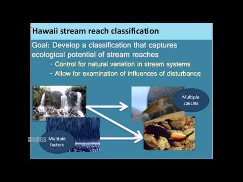 Turning Stream Classifications into Actionable Science