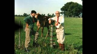 Alberto Merlo  - Con el destino por flete - Cifra