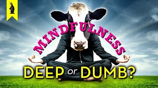 MINDFULNESS: Is It Deep or Dumb? - Wisecrack Edition