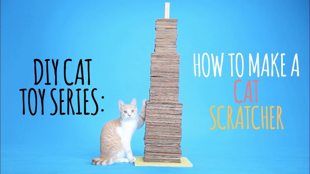 DIY Cat Toys - How to Make a Cat Scratcher - YouTube