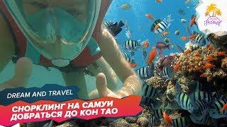 Снорклинг на Самуи. Как добраться до острова Тао. Таиланд 2017