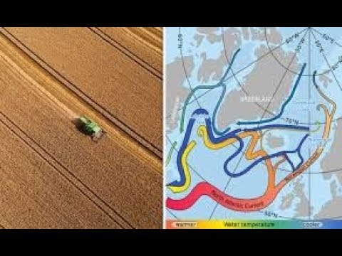 If Gulf Stream Collapses, Britain's Farming Industry Could Be DESTROYED!