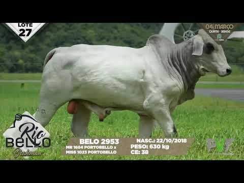 LOTE 27   BELO 2953