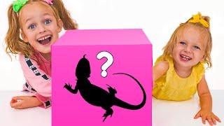 Maya con su familia juega Challenge - ¿qué hay en la Caja + otras historias infantiles
