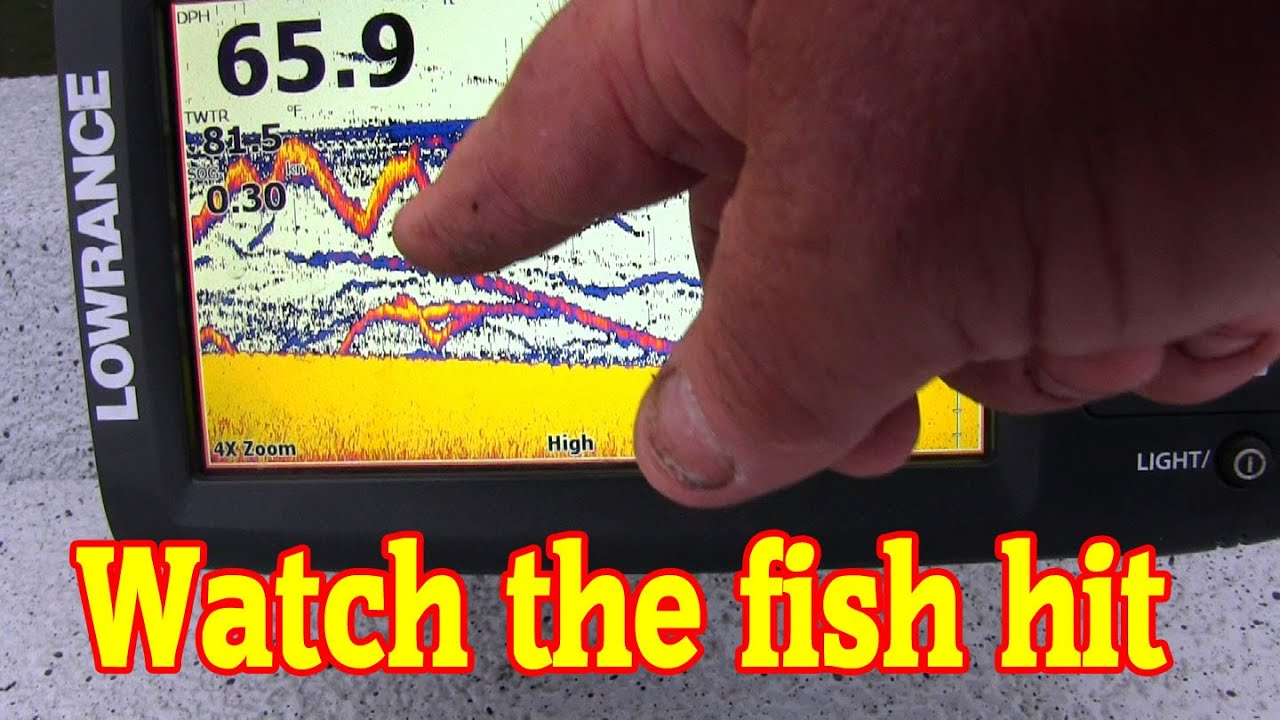 Good inexpensive fish finder that works for catfishing for How does a fish finder work