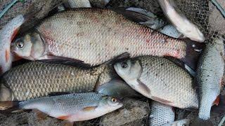 Рыбалка на Южном Урале.