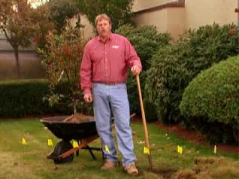 Roger Cook wants you to call Dig Safe before you dig - YouTube
