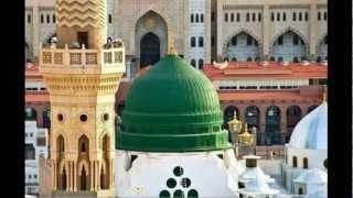 Tablighi jamaat-Shaykh zulfiqar ahmed naqsbandi