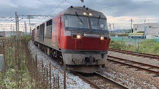 DF200-112 貨物列車 近文駅通過