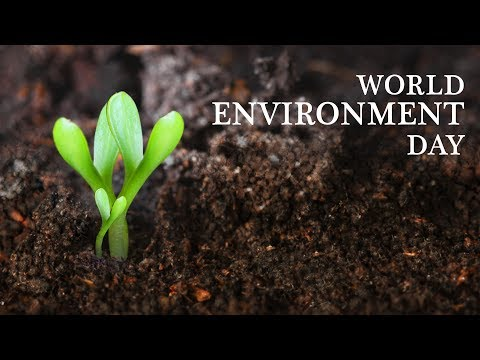 World Environment Day 2010