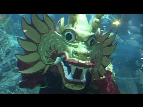 Underwater Chinese dragon dance in Bangkok - no comment