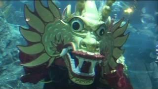 Unterwassertanz eines Chinesischen Drachen, Bangkok
