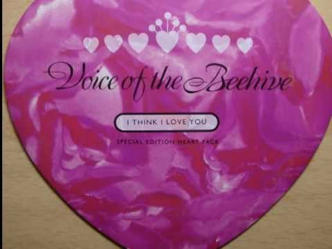 I Think I Love You (Don Was' Guilty Pleasures Mix) (b-side) - Voice Of The Beehive  *audio*