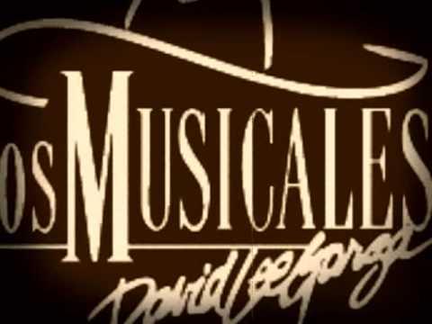 Cara A Cara - David Lee Garza y Los Musicales