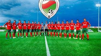 FC Wels:  Ein Verein stellt sich vor